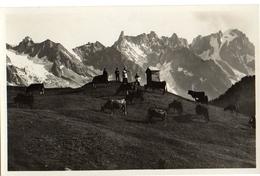 COURMAYEUR - PASCOLI AL COLLE - ED-BROCHEROL - NVG FP - C845 - Aosta
