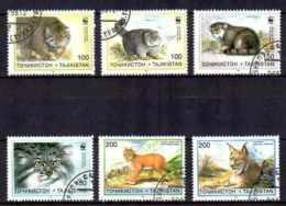 Tadjikistan Animaux Félins (53) Série Complète De 6 Timbres Oblitérés Yv 86 à 91 - Tajikistan