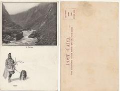 LAPPONIA - RAVINE #1 - Cartoline