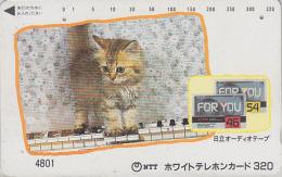 Télécarte Japon 7/11 - 4801 - ANIMAL - CHAT / 320 U !! - CAT Japan Phonecard - KATZE Telefonkarte - GATO - KAT - 3443 - Gatos
