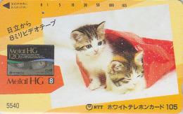 Télécarte Japon 7/11 - 5540 - ANIMAL - CHAT Chats / 105 U ** ONE PUNCH **  - CAT Cats Japan Phonecard - KATZE - 3453 - Gatos