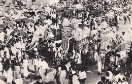 SRI-LANKA--(CEYLON )--the Kandy Perahera--éleplants--voir 2 Scans - Sri Lanka (Ceylon)