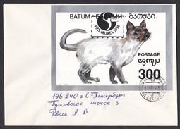 Georgia - Batum/Batumi: Cover To Russia, 1994, Souvenir Sheet, Cat, Overprint Philakorea, Rare Real Use! (traces Of Use) - Georgië