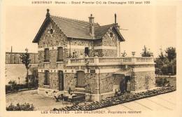 AMBONNAY - Les Violettes;Léon Balouret,propriétaire Récoltant (dos Carte Publicitaire). - France