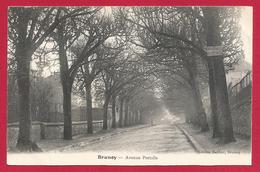 CPA Brunoy - Avenue Portalis - Brunoy