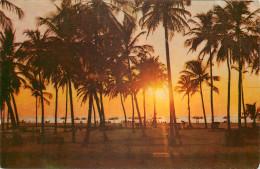 Colva Beach, Goa, India Postcard Unposted - India