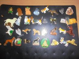 Lot De 32 Pin's Avec Chiens - Animals