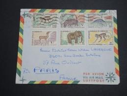 CAMEROUN - Enveloppe De Yaoundé Pour Paris En 1965 , Affranchissement Plaisant - A Voir - L 5755 - Camerun (1960-...)