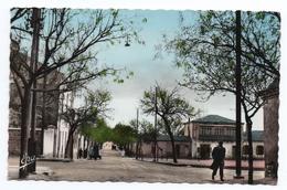 KHENCHELA (ALGERIE) - CPSM FORMAT CPA - RUE DE LA POSTE - Algérie