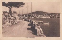 Croatie - Lussinpiccolo -  Editeur Dante Lussin - Croatie