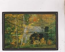 CPM DORSET HOLLOW, OLD GRIST MILL(voir Timbres) - Etats-Unis