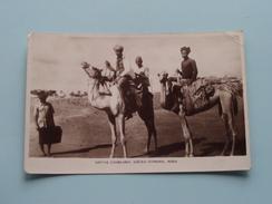 NATIVE Camelmen, Sheikh OTHMAN @ ADEN ( Abassi ) Anno 19?? ( Zie Foto Details ) !! - Yémen
