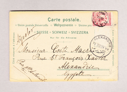 Griechenland 2.7.1904 Ansichtskarte (Zürich) Nach Alexandrie Ägypten - Lettres & Documents