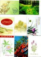 Zakkalender Calendrier De Poche Calendar Taschenkalender   8 Stuks/pcs   Bloemen Planten Fleurs Plantes - Calendriers