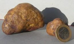 Collection  Minéraux : 2 Pierres Météorite Achondrite (?) Mineral Minerai Minéraux. Traces Ferriques.  Bien Lire Annonce - Minéraux