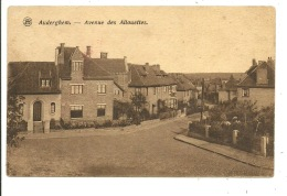 Auderghem Avenue Des Allouettes - Auderghem - Oudergem