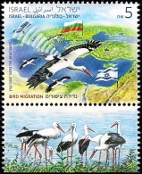 ISRAEL 2016 - Joint Issue With Bulgaria - Migrating Birds - Storks - A Stamp With A Tab - MNH - Storks & Long-legged Wading Birds