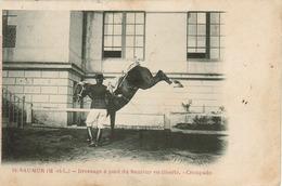Saumur - Lot De 8 Cartes (Ecole De Cavalerie) Voir Scan - Saumur