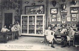 ALFORT - Ecole Vétérinaire D' ALFORT - Une Salle Du Laboratoire D' Hygiène  (92778) - Maisons Alfort