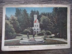 Ro.122S. Vatra-Dornei. Izvorul Sentinela. Warenhaus Schafer.  Romania. - Romania