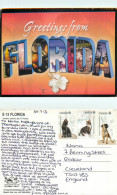 Greetings From, Florida, United States US Postcard Posted 2013 Stamp - Non Classés