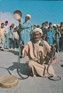 MAROC---MARRAKECH---charmeur De Serpents---voir 2 Scans - Marrakech