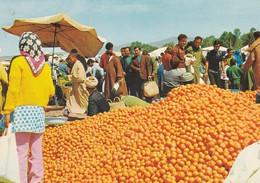 MAROC---AGADIR---marché---voir 2 Scans - Agadir