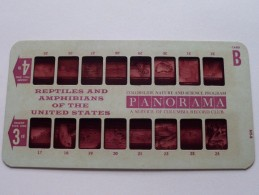 REPTILES AND AMPHIBIANS USA PANORAMA Card B ( Colorslide Travel Columbia Record Club / Zie Foto´s Voor Details ) ! - Lieux