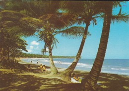 REGARDS FROM THE CARIBBEAN---voir 2 Scans - Antilles