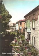 113/FG/14 - PRIMI COLORI: DODICI MORELLI (CENTO FERRARA) - Nuove Ville - Ferrara