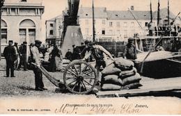 Oude Postkaart Haven Antwerpen Het Laden Van Suiker RRR ??? - Antwerpen
