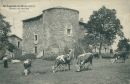 69 SAINT LAURENT DE MURE / Château De Poulieux / - France