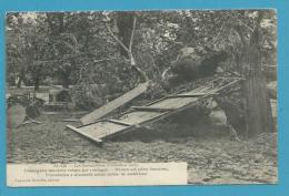 CPA Catastrophe Inondation De 1907 - Châtaignier Séculaire Rompu Par L'ouragan ALAIS ALES 30 - Alès