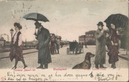 BUDAPEST FERENC JOSEF TER UNGARN, PC, Circulated 1903 - Ungarn