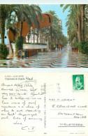 Esplanada De Espana, Alicante, Spain Postcard Posted 1988 Stamp - Alicante