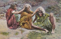 India The Bombay Hunt Natives Looking For Head Lice - India