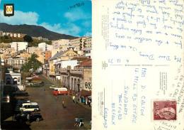 Avenida De Jose Antonio, Santa Cruz, Tenerife, Spain Postcard Posted 1974 Stamp - Tenerife