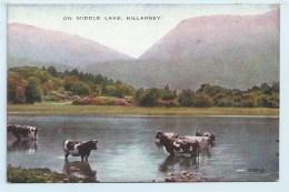 Killarney - On Middle Lake - Wicklow