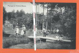 Paysage Au THIENNE-MESSE  -  1910 - Vielsalm
