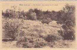 Genk Genck - De Duinen - Les Dunes (sablonnières) - Genk