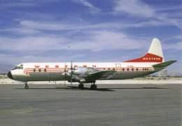 Lockheed L-188A Electra Western Airlines N7136C Lines Airways L 188 - 1946-....: Moderne
