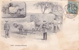 CPA (64) PAU Attelages Béarnais Boeufs Vaches Bovins Bovidés Paysans Illustrateur - Pau