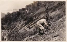Bolivia Native Indians Climbing Mountain Real Photo