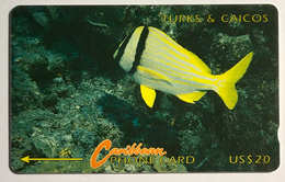 Yellow Stripe Fish