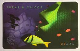 Yellow Fishe 2 Of 3