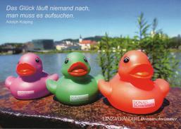 CPM  LINZ Donau Autriche Österreich Austria Canard Citation A. Kolping Donauschwimmer - Austria