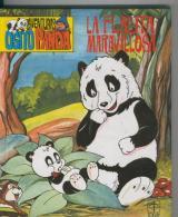Aventuras Del Osito Panda Numero 01: La Flauta Maravillosa - Libros, Revistas, Cómics