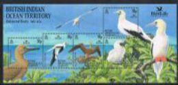 British Indian Ocean Territory SG MS266 2002 Birds Miniature Sheet Unmounted Mint [9/11033/1D] - Stamps