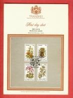 TRANSKEI, 1981, Medicinal Plants,  Mint First Day SHEET,  1.22.2 - Transkei