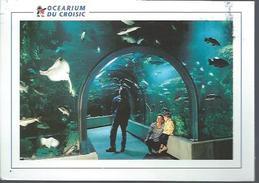 Le Croisic(44) : Ocearium - Le Croisic